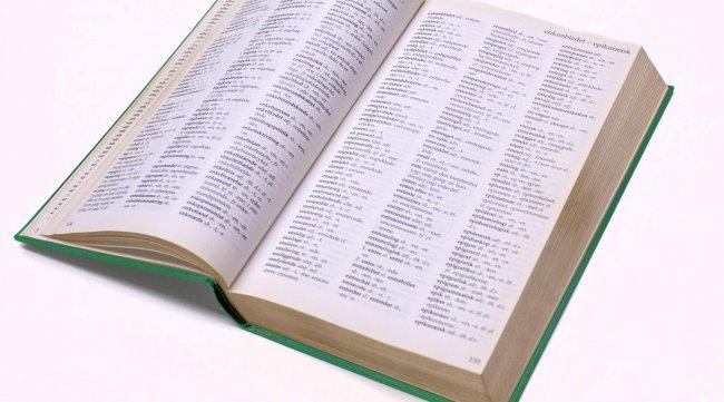 Revit ordbog